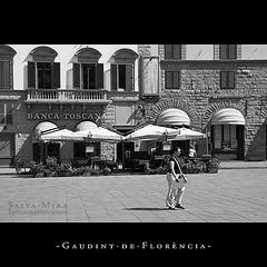 Gaudint de Florència [ #6 ]