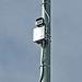 Tedesco Police Camera (4660)