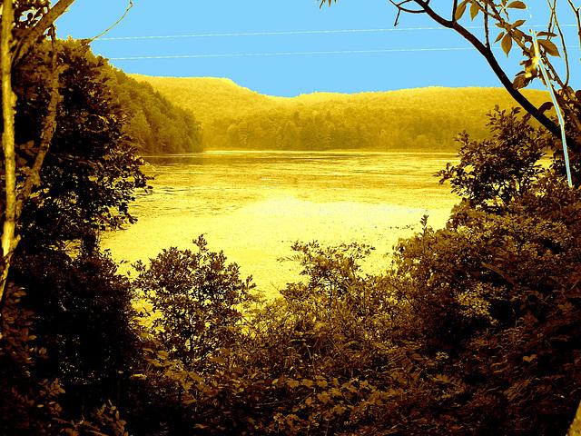 Half moon state park. Sur la 4 près de la 30 nord. Vermont, USA /  États-Unis -   26 juillet  2009 --  Sepia et ciel bleu ajouté