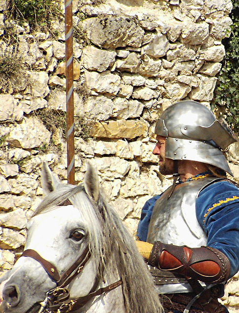 Provins -spectacle féodal