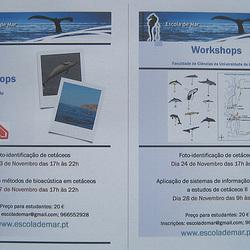 The School of Sea, Workshops in November