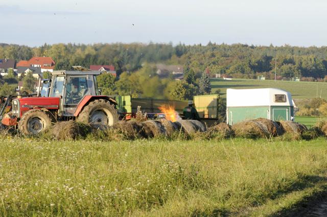 Herbstspaziergang im Odenwald - ein Bauer vernichtet seine Überproduktion