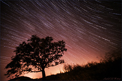 Star trails and wind on fire