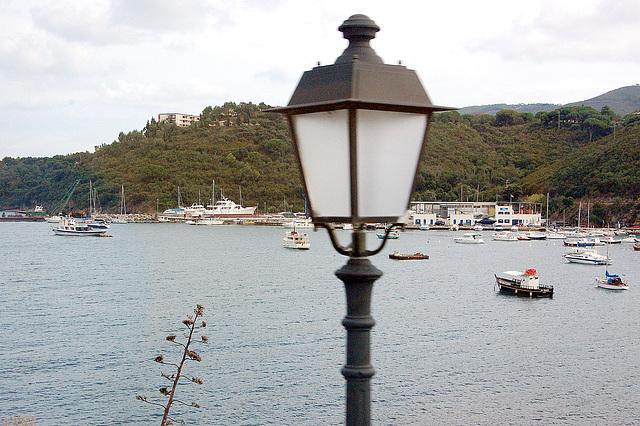 lanterno antaŭ buĥto - Laterne vor einer Bucht