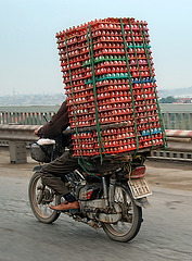 eggs_transporter