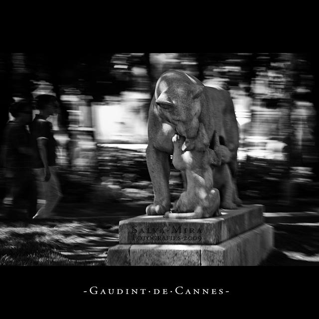 Gaudint de Cannes [ #5 ]