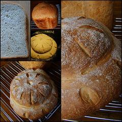 (J.S.11) Landelijk brood