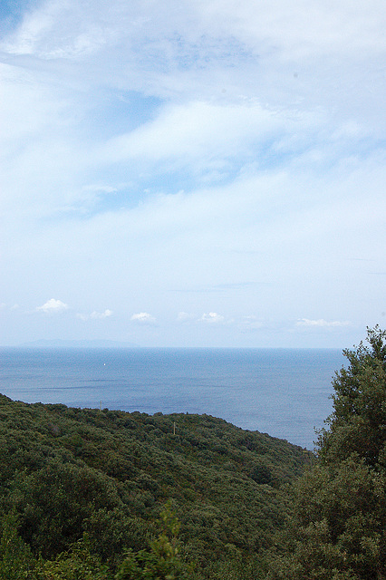 Arbaro - maro - nubaro / Wald, Meer, Wolken