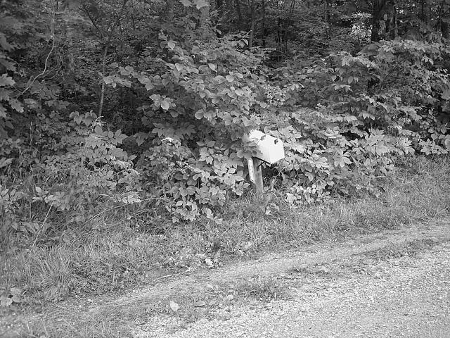 Half moon state park. Sur la 4 près de la 30 nord. Vermont, USA /  États-Unis -   26 juillet  2009 -  Courrier rural - Country mail -  N & B