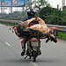 dual pig transporter