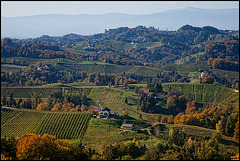the hills of southern Styria....