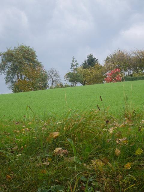 Herbsttag in Gunt