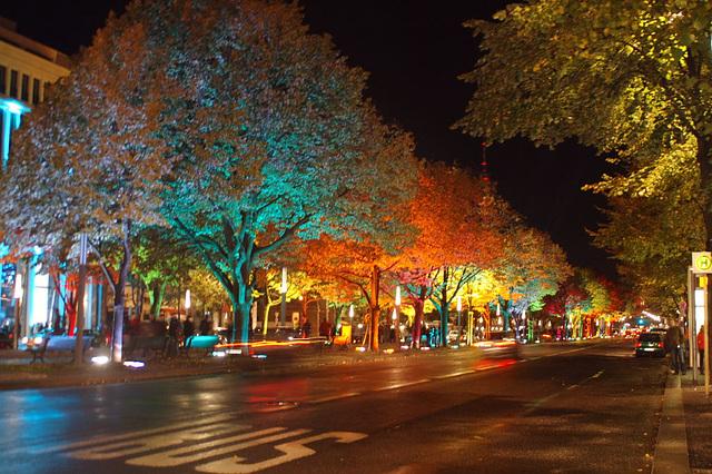 Festival of lights 2009043