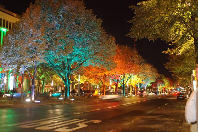 Festival of lights 2009044