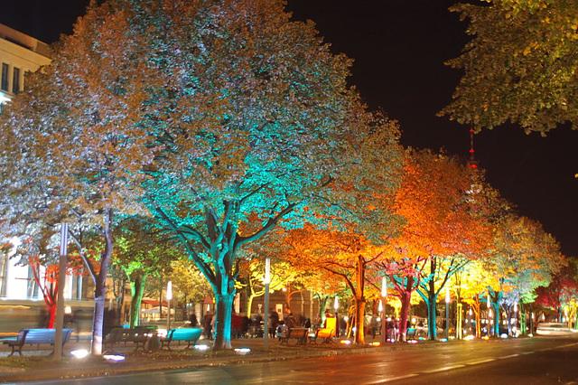 Festival of lights 2009045