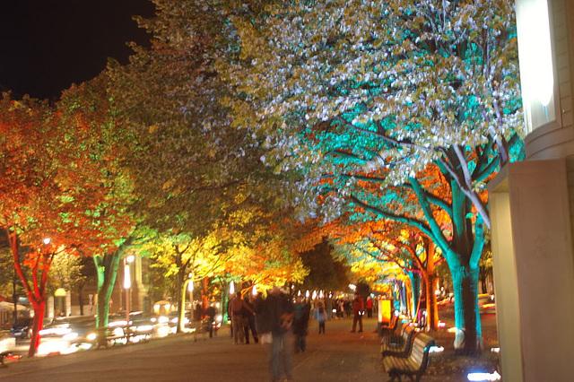 Festival of lights 2009046
