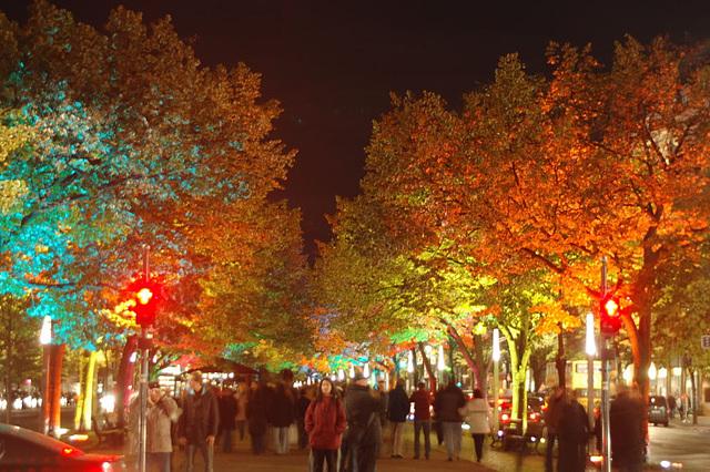 Festival of lights 2009050