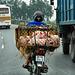 multi pig transporter