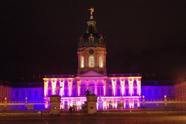 Festival of lights 2009056