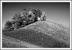 hidden house on the hill.......