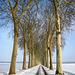 Route de Vaux le Vicomte