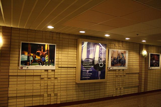 37.FotoWeek.FotoWalk.CrystalCity.VA.10November2009