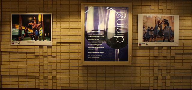 38.FotoWeek.FotoWalk.CrystalCity.VA.10November2009