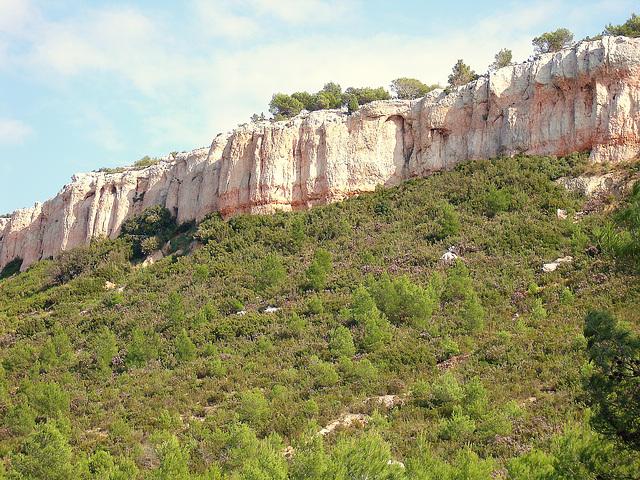 les falaises du plateau de Vitrolles