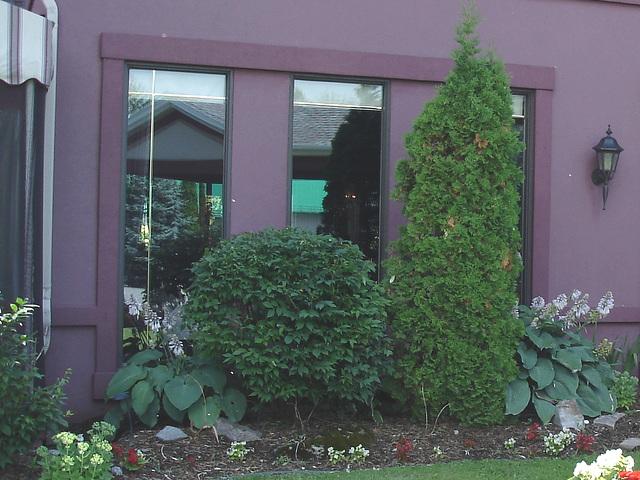 Fenêtres et jardin -  Garden and windows / Juillet 2009