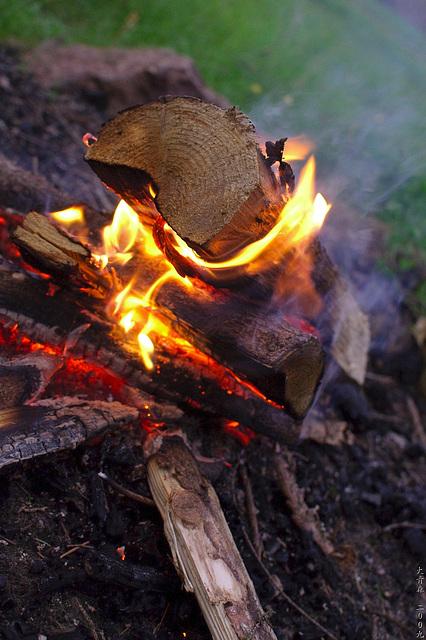 Campfire // 2