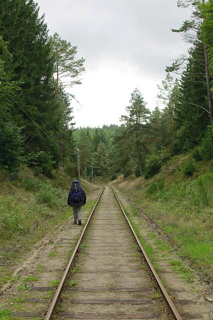 Traintrailspotting