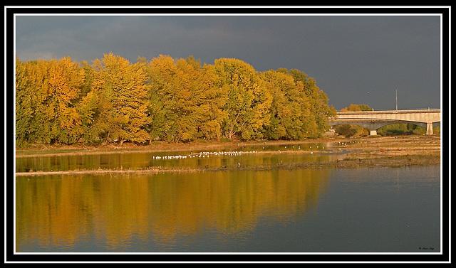 la Loire à l'automne