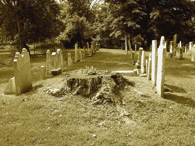 Whiting church cemetery. 30 nord entre 4 et 125. New Hampshire, USA. 26-07-2009 -  Sepia