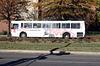 02.WMATA.Metrobus.7PennAve.SE.WDC.15Nov2009
