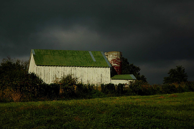 White barn on Aphids Road