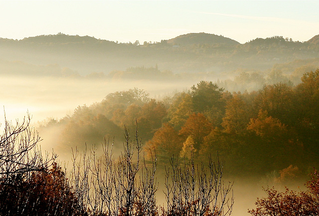 L'automne pastel
