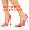 Petit canard et Talons Hauts  / Little duck and high heels -  Cadeau Krisontème.