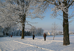 Spaziergang bei -15°C in Liebenau - Osterzgebirge