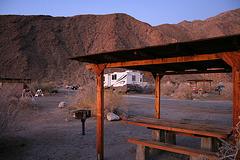 Borrego Palm Canyon Campground (3153)