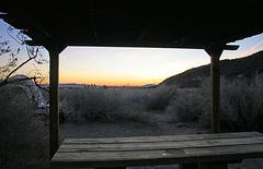 Borrego Palm Canyon Campground at Dawn (3157)