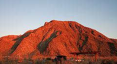 Borrego Palm Canyon Campground at Dawn (3162)