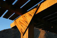 Borrego Palm Canyon Campground Detail (3169)