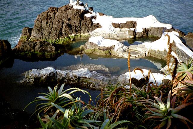 Madeira. Lava-Meereswasser-Schwimmbecken.  ©UdoSm