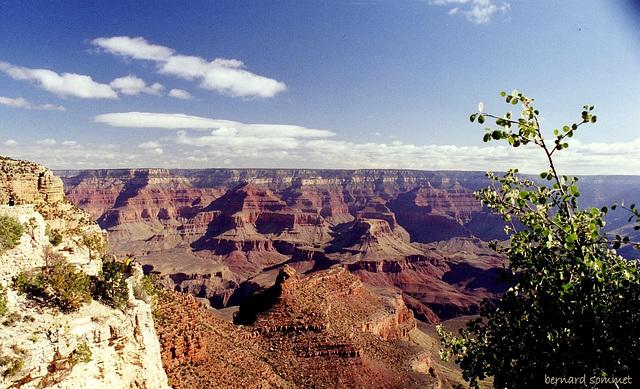 Le Grand Canyon en plein jour