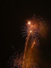 ein frohes und gesundes neues Jahr...2010