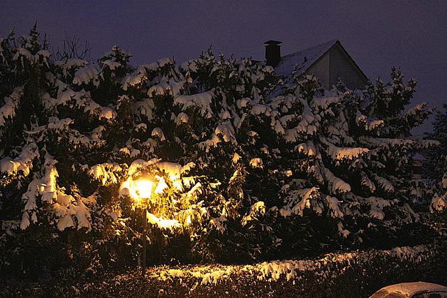 20100103 1315Aw [D~LIP] Schnee, Bad Salzuflen