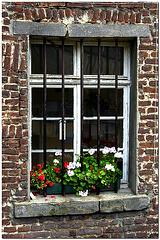 Schloss Dyck, Fenster