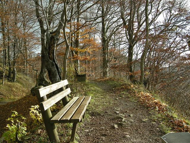 Burgberg - Harz
