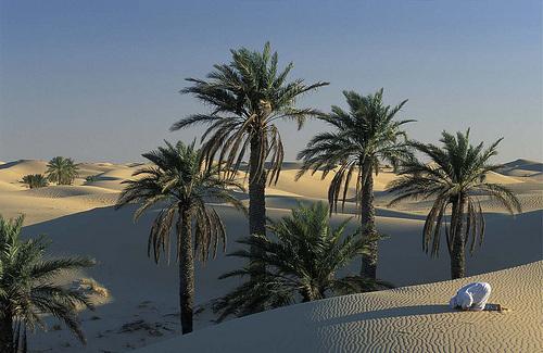 sahara - Algérie.
