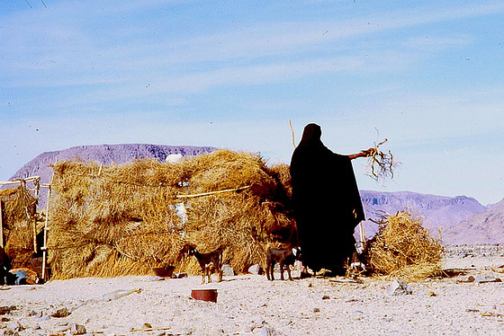 Sahara-toureg-du Hoggar-3